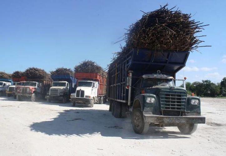 Algunos camiones de carga no han pagado sus derechos de transporte. (Edgardo Rodríguez/Sipse)