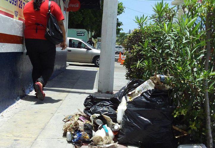Porteños tiran basura en la calle; argumentan que el servicio es caro. (SIPSE)