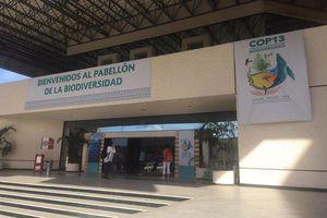 COP 13- Conferencia de las naciones unidas sobre biodiversidad