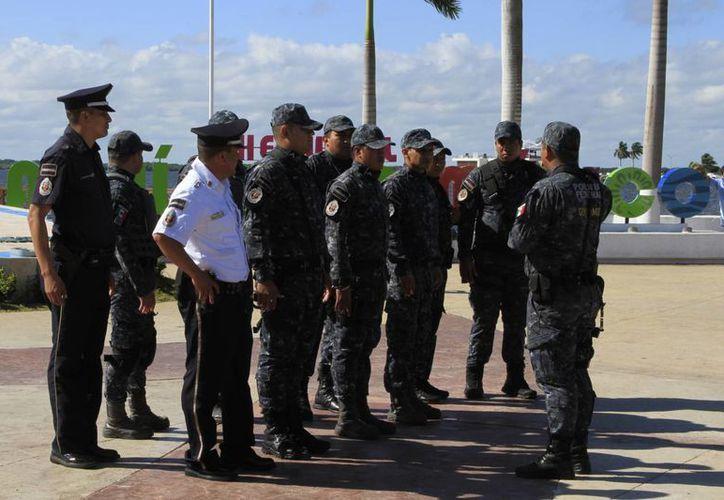 Una de las acciones de la Gendarmería Ambiental es vigilar la normatividad de los recursos naturales de Quintana Roo. (Ángel Castilla/SIPSE)