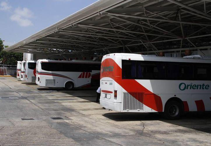 Las unidades cuentan con mayor confort para los turistas. (Israel Leal/SIPSE)