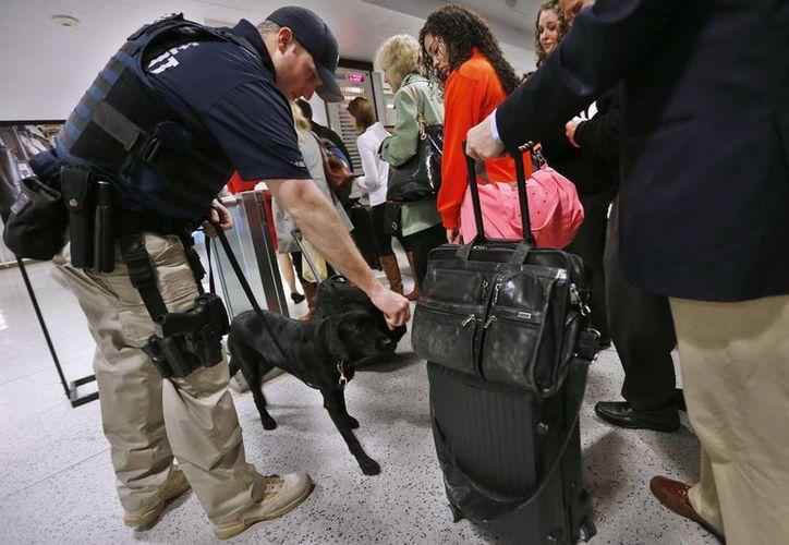 Una unidad K-9 de policía inspecciona en Nueva York a viajeros en un tren. (Agencias)