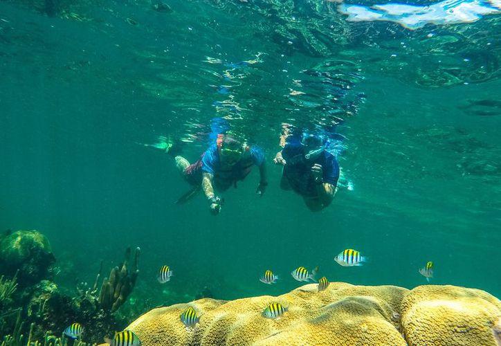 Quintana Roo cuenta con 17 Áreas Naturales Protegidas, que pueden visitar turistas nacionales y extranjeros. (Redacción)