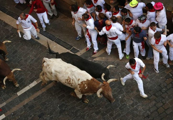 La ganadería de Fuente Ymbro fue protagonista de una carrera de dos minutos y 24 segundos en las calles de Pamplona, en el marco del cuarto encierro de los festejos tradicionales de la feria de San Fermín. En la foto, los participantes evaden las cornadas de los bravos bureles (AP)