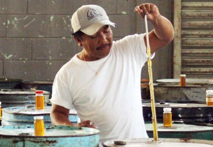Productores locales exigen respuestas por el retraso en el otorgamiento del dinero prometido. (SIPSE)
