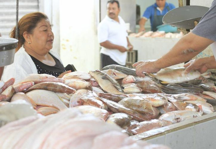 La venta de mariscos en pescaderías no ha repuntado como se esperaba durante la cuaresma. (Harold Alcocer/SIPSE)