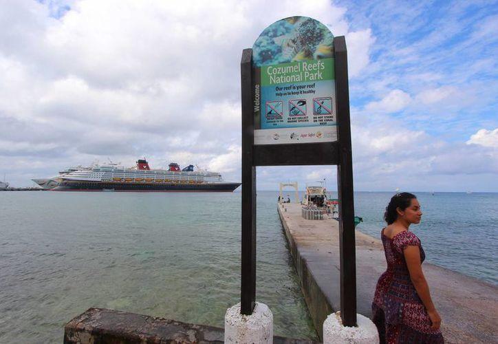 Para el viernes 29 de enero se tiene programada la llegada de seis embarcaciones. (Gustavo Villegas/SIPSE)