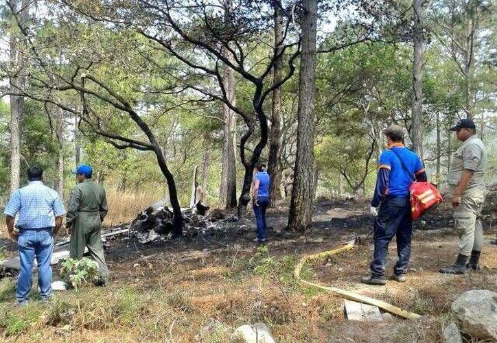 La avioneta se estrelló en la comunidad de Villa Verde, en la costa atlántica hondureña. (Twitter.com/@COPECO_HONDURAS)
