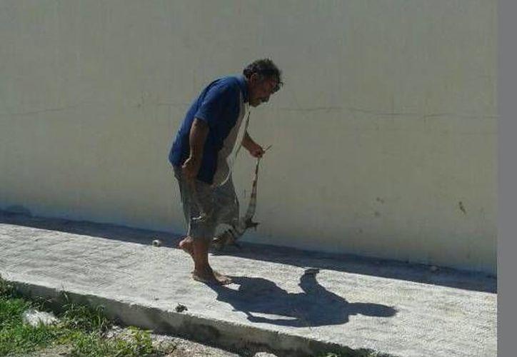 Los vecinos expresaron que la manera de actuar de los hombres fue muy cruel. (progresohoy.com)