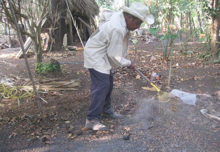 La comunidad no tienen calles pavimentadas, son caminos de terracería que intercomunica las casas entre sí. (Harold Alcocer/SIPSE)