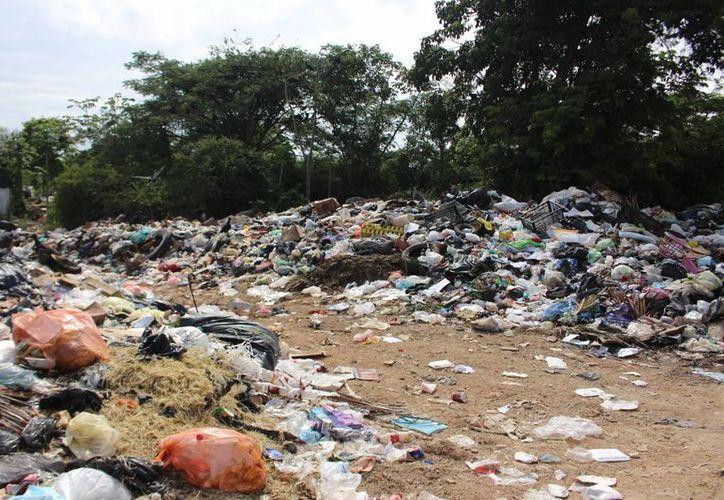 En Quintana Roo aun existen municipios donde no existe un manejo adecuado a los residuos sólidos. (Benjamín Pat/ SIPSE)