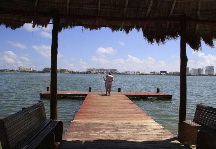 El sistema de transporte con barcos de bajo calado no afectará al manglar. (Tomás Álvarez/SIPSE)