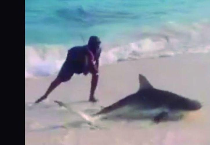 Tras el ataque al tiburón, las autoridades colombianas ordenaron el cierre temporal de la reserva natural. (Captura de pantalla/YouTube)