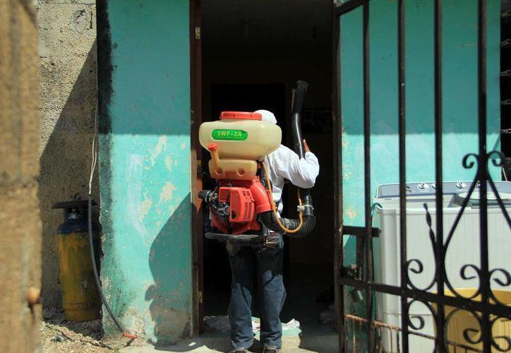 La fumigación y abatización de predios en Yucatán es permanente. (Milenio Novedades)