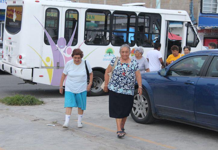Más de 33 mil adultos mayores en Quintana Roo reciben apoyo económico de Sedesol. (Foto: SIPSE)