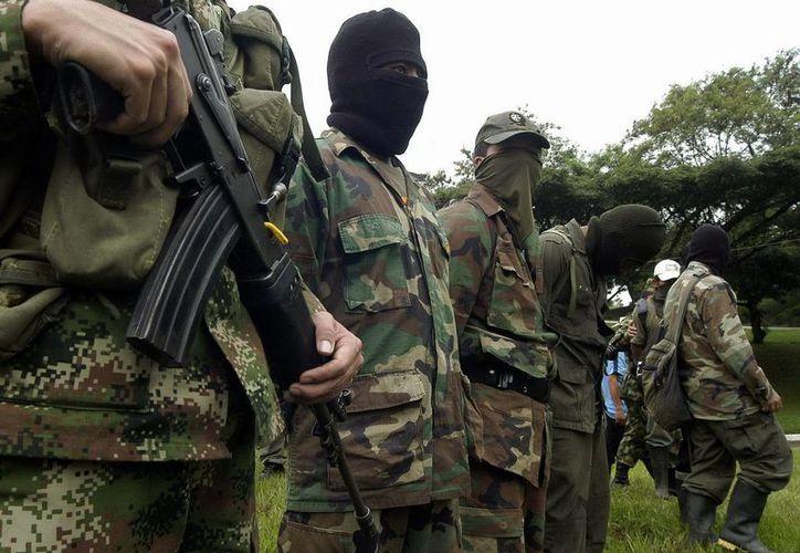 Las autoridades afirman que las FARC abarcan varias etapas en el negocio ilegal del narcotráfico. (EFE)