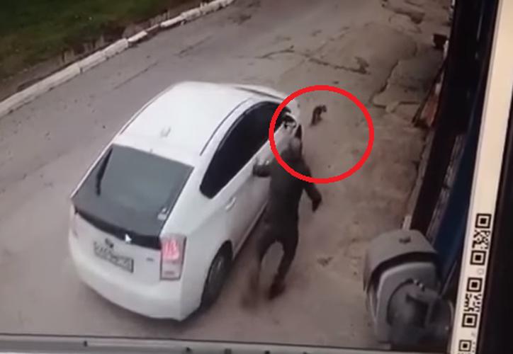 En las redes sociales ha sido publicado un video en el que se ve cómo un coche atropella a un pequeño perro frente a su dueño. (Captura YouTube).