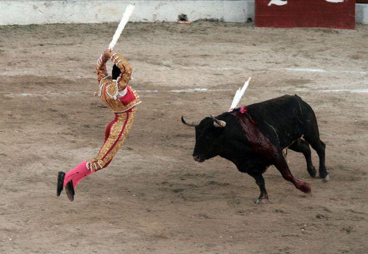 """Joselito Adame, de 23 años, mostró su clase ante """"Aluxe"""" y """"Mago"""". (Antonio Sánchez / SIPSE)"""
