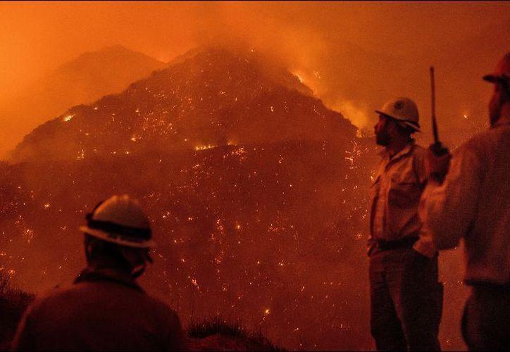 Los fuegos han arrasado 67 mil 300 hectáreas, un área más grande en superficie que la ciudad de Chicago. (Foto: AP)