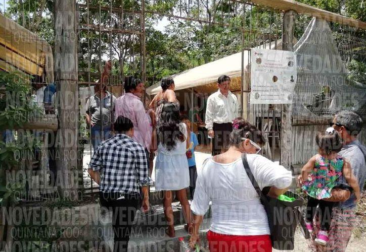 Casilla 172 que corresponde al municipio de Benito Juárez y que se ubica en la carretera libre Cancún-Leona Vicario. (Fernando Duque/SIPSE)
