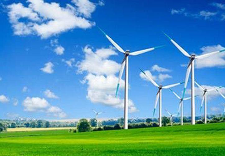 En Cancún sólo existen siete aerogeneradores, a pesar del potencial del estado por la fuerza de sus vientos. (Redacción/SIPSE)
