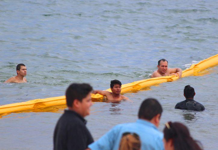 Bañistas se cuelgan de la malla antisargazo que ha sido instalada en Playa del Carmen. (Daniel Pacheco/SIPSE)