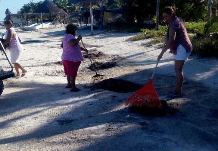 Limpiarán seis kilómetros de arenales, priorizando el muelle y zonas de hospedaje. (Raúl Balam/SIPSE)