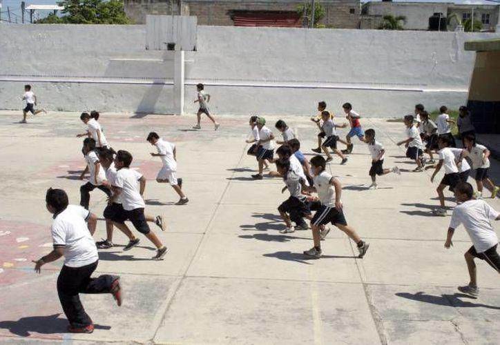 Cerca del 30 por ciento de los colegios públicos de Q. Roo, no cuentan con profesor de Educación Física. (Gerardo Amaro/SIPSE)