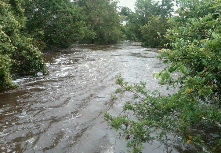 El nivel del Río Hondo aumenta de 20 a 30 centímetros cada 24 horas. (Archivo/SIPSE)