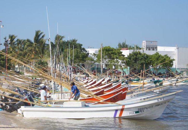 La pesca es una de las actividades que resulta más afectada cuando hay marea roja. La imagen corresponde al puerto de Celestún. (SIPSE)