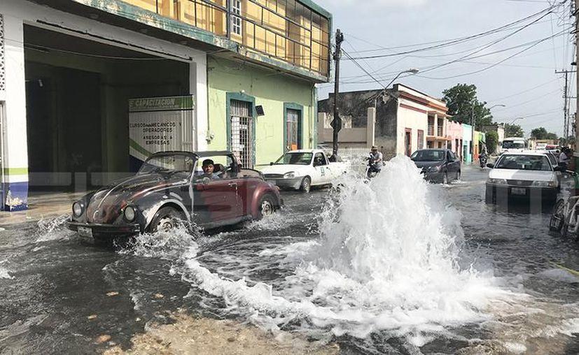 Sería hasta la tarde de este viernes que el servicio de agua potable se reestablezca. (Milenio Novedades)