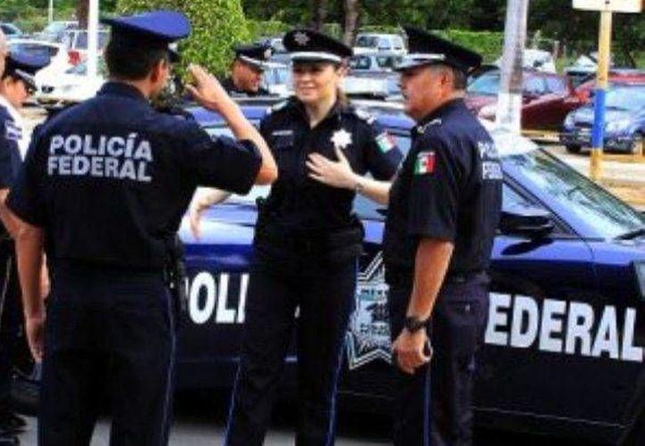 La Policía Federal y Derechos Humanos trabajarán en la capacitación para cuidar las garantías individuales de los ciudadanos. (Contexto)