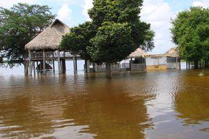Se desborda laguna en Quintana Roo; desalojan a familias