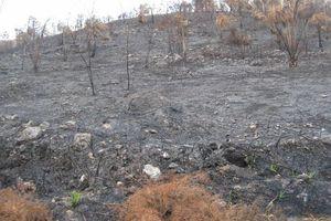 Exhortan a no realizar quemas mientras continúa el clima seco