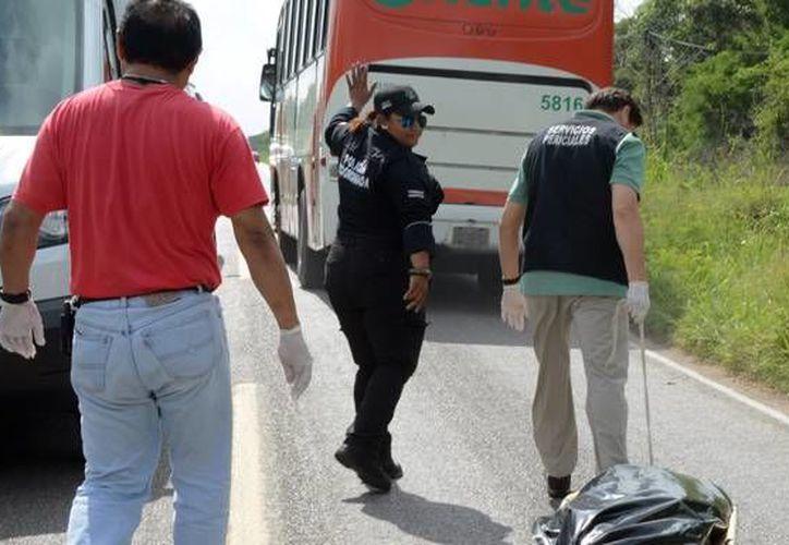 Un cadáver fue encontrado en montes de la carretera Ucú-Caucel. (Milenio Novedades)