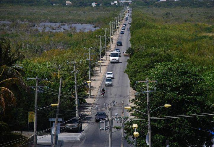 Se reporta que existe un deterioro de la zona de humedales. (Victoria González/SIPSE)