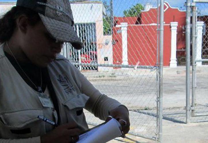 Los brigadistas portan chaleco e identificación oficial. (Coral Díaz/SIPSE)