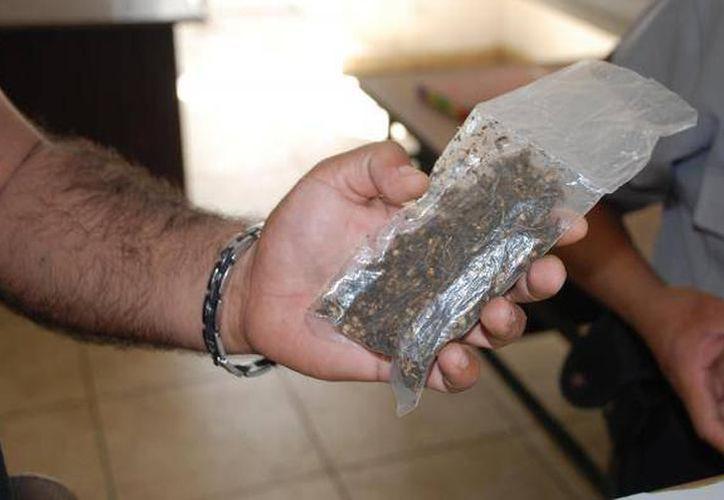 Gracias a una denuncia la SSP detuvo a un narcomenudista y dos compradores de marihuana, lo anterior en Kanasín. (Milenio Novedades)