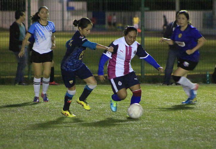 La cancha de pasto sintético de la Unidad Deportiva Bicentenario fue el escenario donde se llevaron a cabo los encuentros de cuartos de final. (Miguel Maldonado/SIPSE)