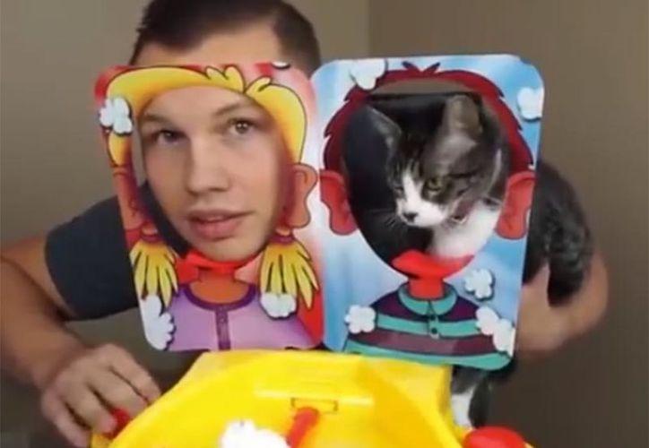 El video muestra cómo el adolescente pone la cabeza de su gato para que reciba un golpe y crema. (Foto: Captura)