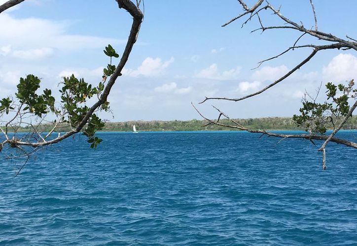 Son alrededor de 100 embarcaciones que navegan en el cuerpo lagunar. (Javier Ortiz/SIPSE)