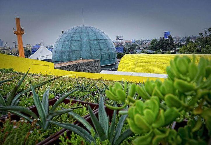 Imagen de una azotea verde, que se plantean como una solución a la contaminación en grandes ciudades como la capital del país. (Imagen:www.efectoverde.org)