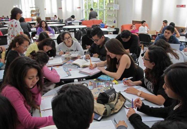 Las becas son para estudiar un posgrado o una licenciatura en México o en un país en el extranjero. (Archivo/SIPSE)
