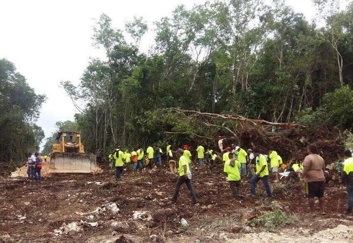 Un grupo de trabajadores de la empresa de materiales de construcción ABC es acusado de devastar un predio de Solidaridad. (Cortesía)
