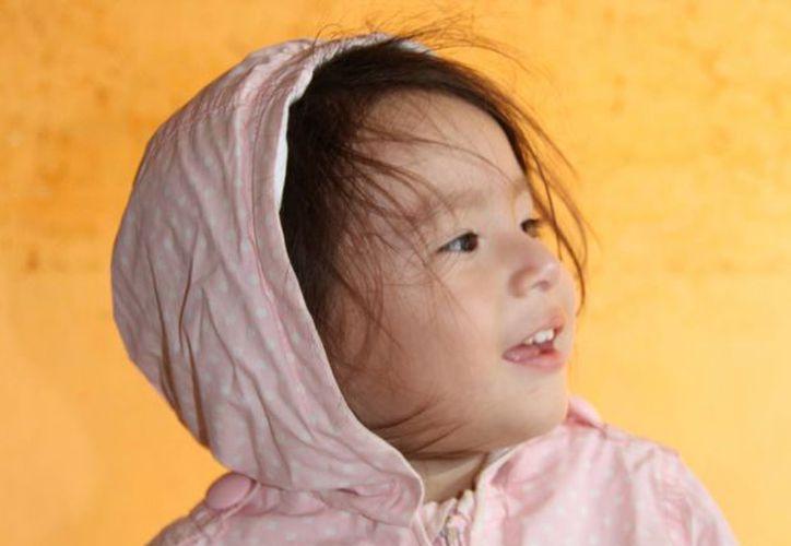 Recomiendan abrigar cabeza, rostro y boca para evitar el respirar aire helado, consumir alimentos ricos en vitamina A y C. (Tomás Álvarez/SIPSE)