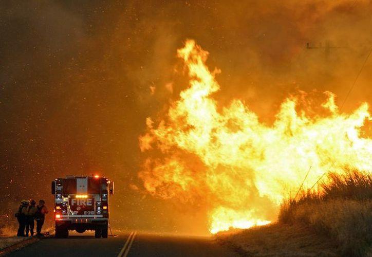 El incendio que es combatido por aire y tierra con unos 800 bomberos, se está dando muy cerca del Refugio Road. (Archivo/AP)