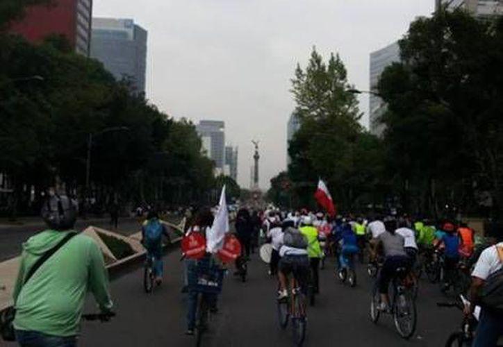 Ciclistas que apoyan a Morena en el Paseo de la Reforma del Distrito Federal. (Twitter)