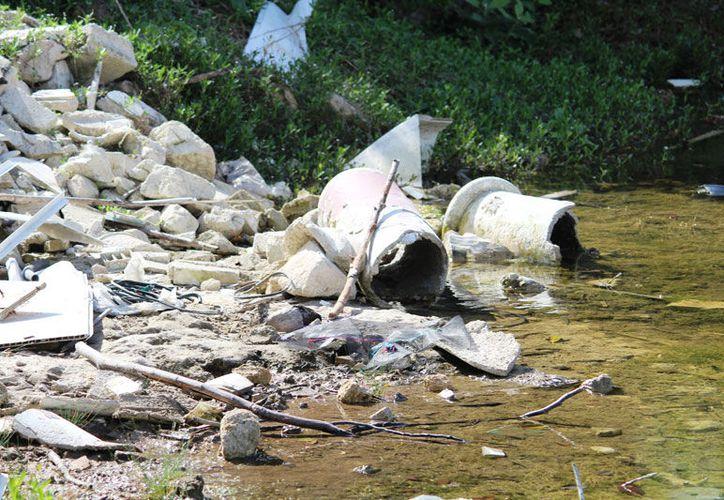 Los cenotes en la zona urbana se usan como basureros (Octavio Martínez/SIPSE).