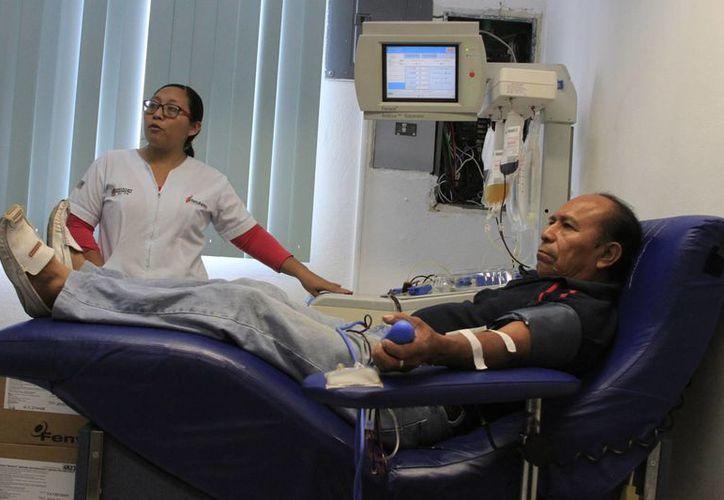 En cinco años el número de donadores altruistas de sangre se cruadriplicó. (Ángel Castilla/SIPSE)