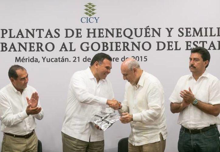 El gobernador Rolando Zapata estará este domingo en la Escuela primaria vespertina 'Amalia Gómez de Aguilar' para rendir un homenaje póstumo. (SIPSE)